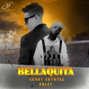 DALEX FT. LENNY TAVAREZ - BELLAQUITA - (TRANSITION TO TURRO + VILLERA) - DJ ROMY - 95-102BPM
