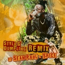 Stylo  G FT. Spice & Sean Paul - Dumpling - Dancehall (Intro & Outro) - break - 101 bpm