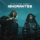 Bad Bunny x Sech - Ignorantes - Pack 3 Track - Intro Coro - Play Game - 96BPM - DJRomy - ER