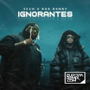 Bad Bunny x Sech - Ignorantes - Pack 4 Tracks - Transition Private - Salsa & Turro - DJRomy - ER