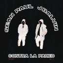 Sean Paul ft J balvin - Contra La Pared - Reggaeton (Intro & Outro) - Redrum - Break - 98 bpm