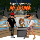 Nejo Ft Guaynaa - Mi Leona - Reggaeton (Intro & Outro) - Break - 87 bpm